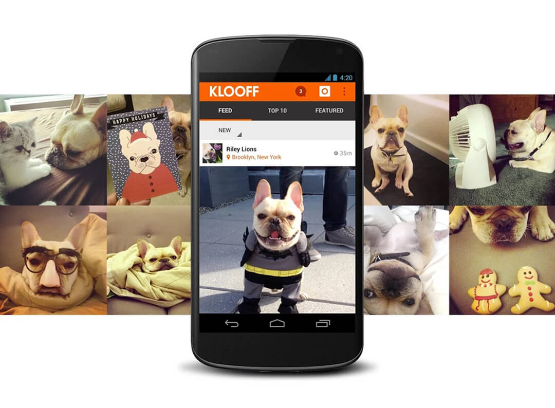 Social Networking Platform for Pets - KiwiTech